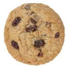 Otis Spunkmeyer Oatmeal Raisin Bagged Gourmet Cookie Dough, 5 Pound Bag -- 4 per case. (Cookie Dough Spunkmeyer Otis)
