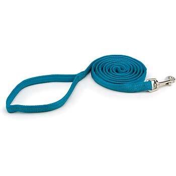 Petmate 5/8 Nylon Reflective Padded Dog Leash in Teal, Medium, Color:Blue