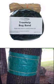 TreeHelp Bug Band