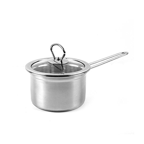 Classic Stainless Saucepan with Cover Nonstick Dishwasher Safe PFOA Free Cookware Handy Pot Sauce Pan with Glass Lid By Delidge,6 inch