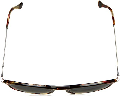 Sonnenbrille Grey Brown Grey Marrón Persol PO3124S v1OwxUqdd