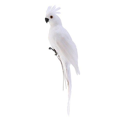 Artificial Ornaments (Homyl Artificial Animal Feather Fake Bird Taxidermy Garden Home Decor Ornament - White)