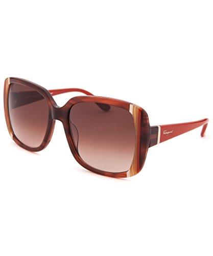 Salvatore Ferragamo Women's SF672 Sunglasses, Striped Brown by Salvatore Ferragamo