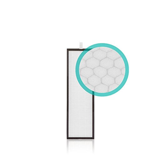 Alen (TF60-MP) HEPA-OdorCell Replacement Filter for Alen T500 Air Purifier, removes Smoke and Pet odors, 1-Pack