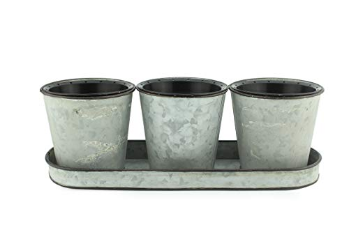 Darware Galvanized Succulent Pot Set (3 Pots with Tray); Farmhouse Flower Tin Pot and Tray Windowsill Planter or Caddy