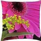 Pink Gerbera - Throw Pillow Cover Case (18