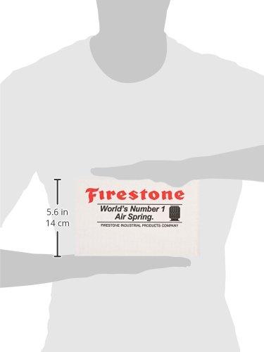 Firestone WR17602191 Air-Rite Electric Paddle//Panel Kit Firestone Ride-Rite