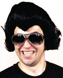 Elvis Rock Star Wig Costume Accessory (Famous People With Wigs)