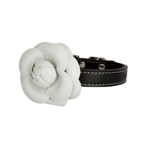 LazyBonezz Pet Flower Collar, Black – Size Small, My Pet Supplies