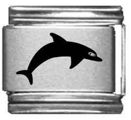 (Dolphin Laser Italian Charm)