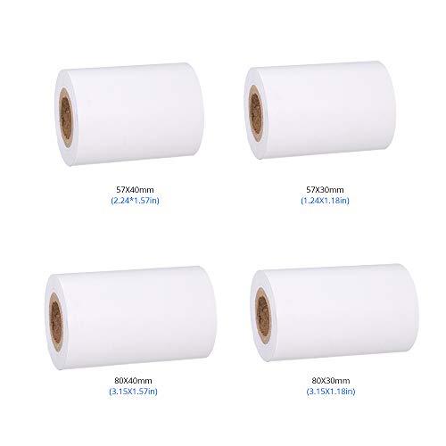 Festnight Thermal Cashier Register Paper Waterproof Paper 10 Rolls for POS Printer 3.151.57in/8040mm Customer Bills for Cashier Supermarket Mall