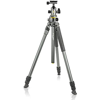 Vanguard Alta Pro 2+ 263AB 100 Aluminum Tripod with Alta BH-100 Ball Head and Multi-Angle Center Column