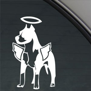 Amazon Com Pitbull Dog Angel With Wings Decal Window