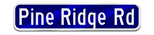 Personalized Single (Municipal Supply and Sign Personalized Single Sided Street Name Sign with Rounded Corners,6 x 24 Inch,)