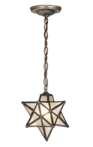 9 Inch W Moravian Star Mini Pendant Outdoor Lighting -