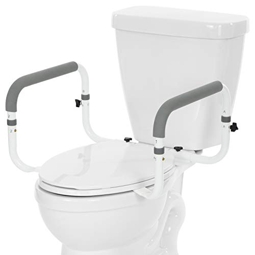 Vive Toilet Safety Frame
