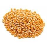 popcorn 20 lb - Trinidad Benham 295365710 Jack Rabbit Yellow Popcorn 20Lbs