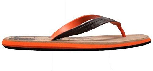 Shaboom Menns Dual Density Komfort Thong Sandal Brun / Orange