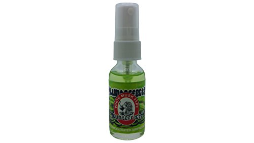 Musk Type - Blunteffects/Blunt Effects 100% Concentrated Odor Air Freshener Home & Car Spray (White Musk Type)