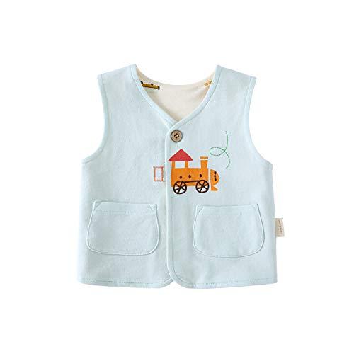 pureborn Toddler Baby Boy Cotton Cartoon Train Vest Spring Autumn Waistcoat Mint 2-3 Years