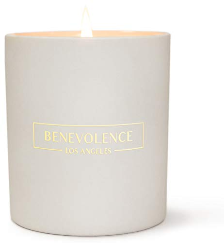 Scented Candles Soy Candles - (Secret Garden - Burberry) Aromatherapy Candles Soy Candle Relaxing Candles White Ceramic Candle Perfect Scented Candles for Home Decor and Stress Relief from Benevolence LA
