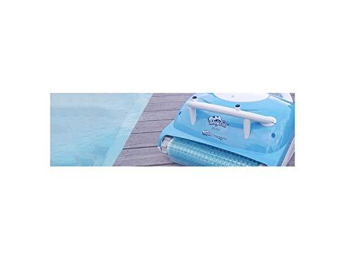 splash Robot electrique de piscine fond Dolphin