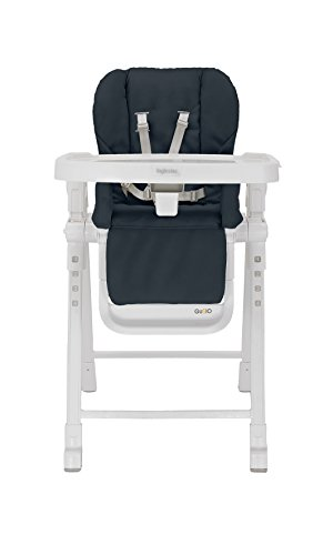 Inglesina USA Gusto Highchair, Graphite