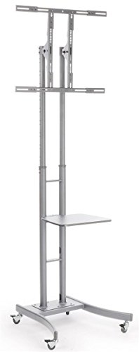 Displays2go MB863ESLV Portable TV Stand with Wheels for LCD/Plasma/LED TVs Between 32 & 65'', Steel by Displays2go
