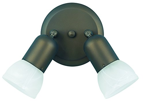 Light Steel Ceiling Spot Light - Canarm ICW92 ORB Jasper Double Head Directional Spot-Light