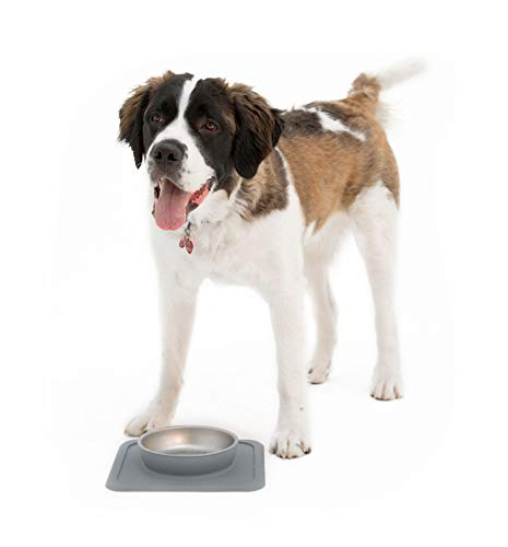 Ono Great Bowl Single Feeder - Medium to Large Pets (Charcoal)