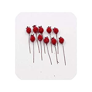 END GAME 50 PCS Mini Fake Glass Pomegranate Fruit Small Berries Stamen Artificial Flowers Red Decorative 116