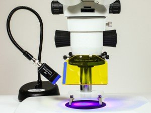 NightSEA - NIGHTSEA Fluorescence Viewing System with Royal Blue with Dimmer Base