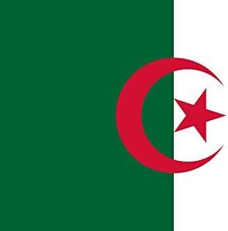 Gran Bandera de Argelia 150 x 90 cm Satén Durobol Flag: Amazon.es: Deportes y aire libre