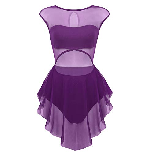 (ranrann Women's Performance Asymmetrical Mesh Cutout Tank Dress Latin Lyrical Modern Dancing Costumes Dark Purple)