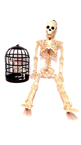 (Giant Skeleton with Posable Joints, 35 inches with Raven Skeleton in Bird Cage, 10 inches, Set of 2 Halloween)