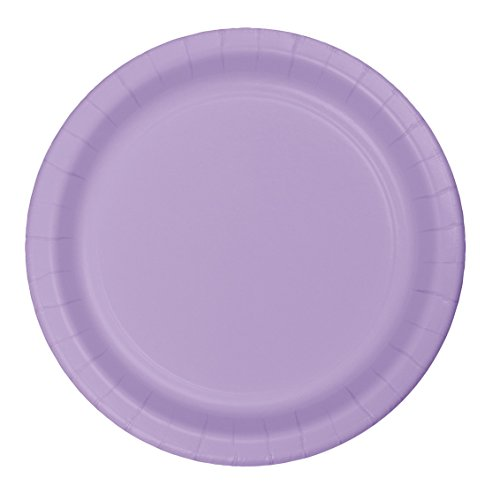 Creative Converting Touch of Color 24 Count Paper Dinner Plates, Luscious Lavender - -