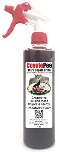Predator Pee 100% Coyote Urine - Territorial Marking Scent - Creates Illusion That Coyote is Nearby - 16 oz