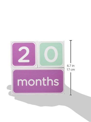 Pink Pearhead Milestone Blocks