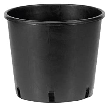 PACK OF 5 Small / Large Plant Pots Tall Plastic Planters Garden Containers  (18.5 Litre