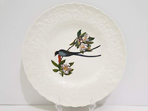 Alfred Meakin England Birds of America Fork-Tailed Flycatcher Plate #168