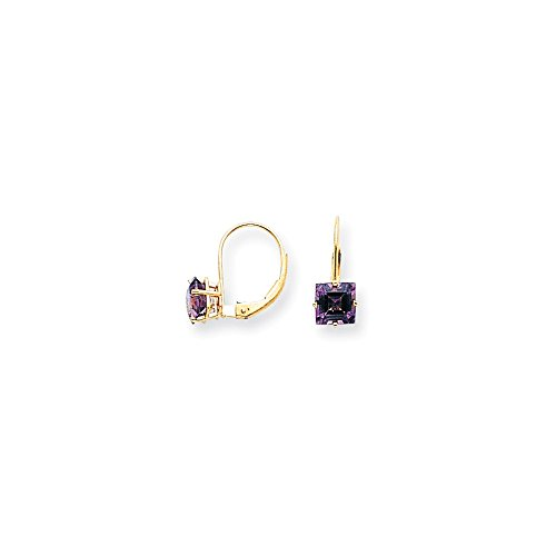 Top 10 Jewelry Gift 14k 6mm Princess Cut Amethyst Leverback Earrings