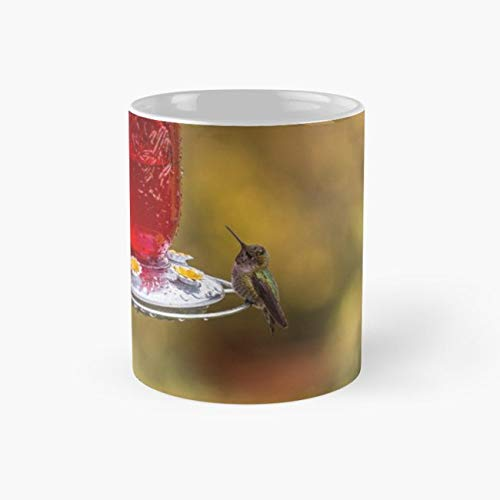 Raindrop Hummingbird Feeder - Wet 110z Mugs