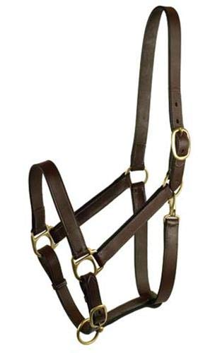 - GATSBY LEATHER COMPANY 283541 Leather Halter Havanna Brown, Horse