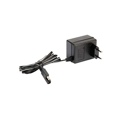 1182041201LC - Cargador de batería para cortacésped GGP ...
