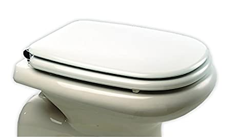 Sedile Wc Ideal Standard Serie Tesi.Bemis 3460cpt000 Tesi Sta Tite Sedile Copriwater Dedicato