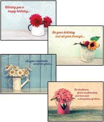 Celebrating You - Scripture Greeting Cards - KJV - Boxed - Birthday