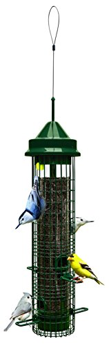Brome Squirrel Classic Feeding Capacity product image
