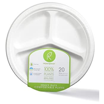 Repurpose 100% Compostable, Tree Free, Plant-Based Plates, Round, 10 inch (240 Count)