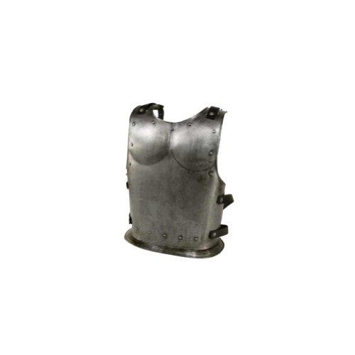 Armor Venue Backplate for Dark Drake or Dark Warrior - Large - Grey Armour