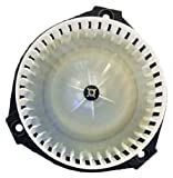 TYC 700109 Chevrolet/GMC/Oldsmobile Replacement Blower Assembly